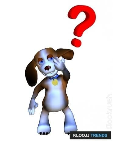 dog walker interview questions answers