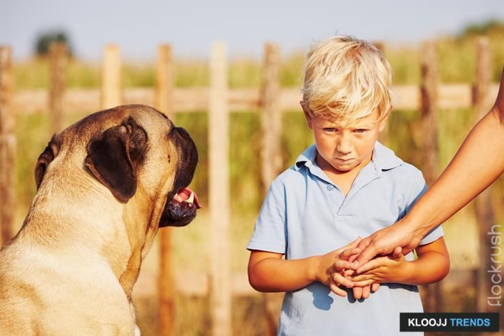 correcting aggressive dog behavior