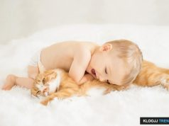 pets and babies health