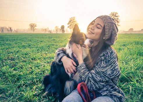 loyal companion dogs