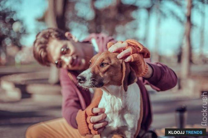 a dog is a man's best friend